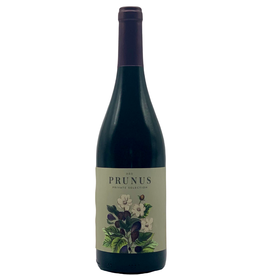 under 20 Gota Wine Prunus Dao Tinto