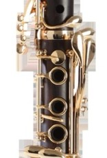 Backun Protege Bb Cocobolo Clarinet with gold keywork