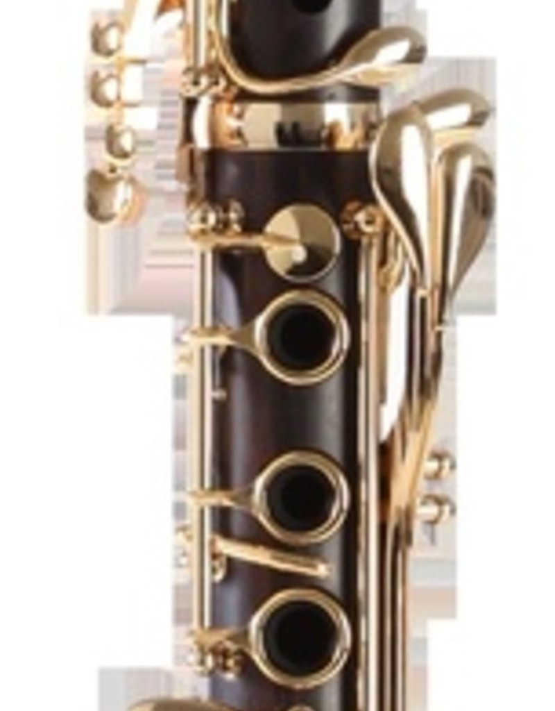 Backun Backun Protege Bb clarinet Grenadilla Gold keywork