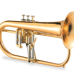 Jupiter Top pick Flugelhorn for a reasonable price!