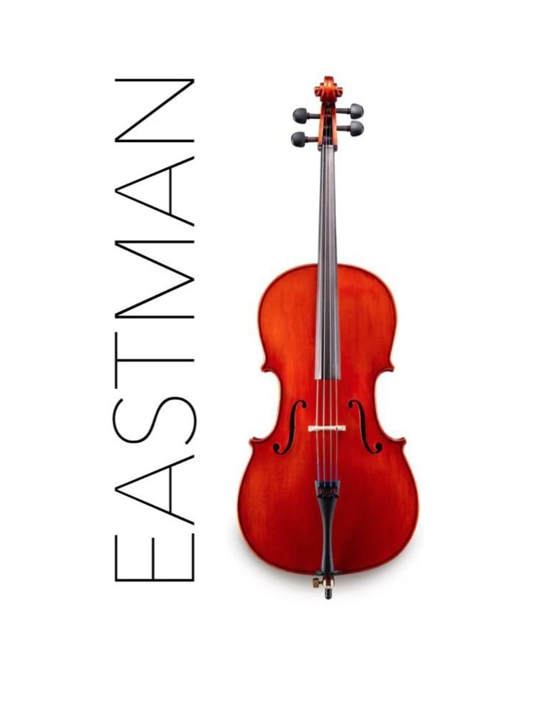 Eastman VC150 Cello Outfit
