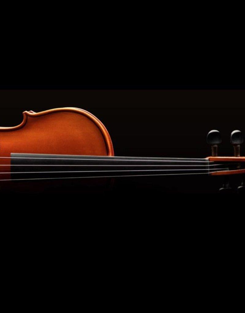 Eastman VL50 Violin Outfit