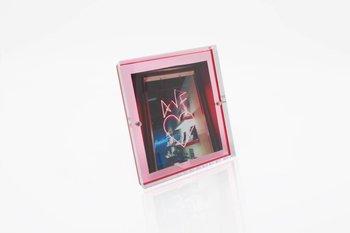 Alexandra Von Furstenberg Snap Frame in Rose 5x5
