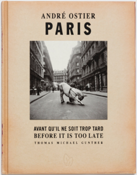 Pointed Leaf Press Paris,  Before It's Too Late by Thomas Michael Gunther