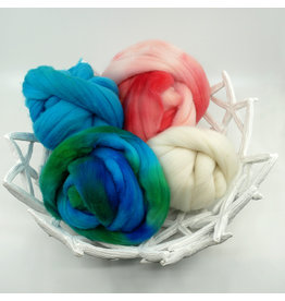 BJS Fiber Creations Spin Together Team Colorway 2019 Rambouillet