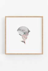Baby Great White Shark Wall Print