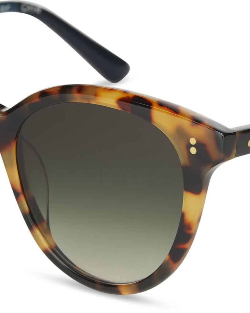 TOMS Eyewear TOMS Aaryn Sunglasses