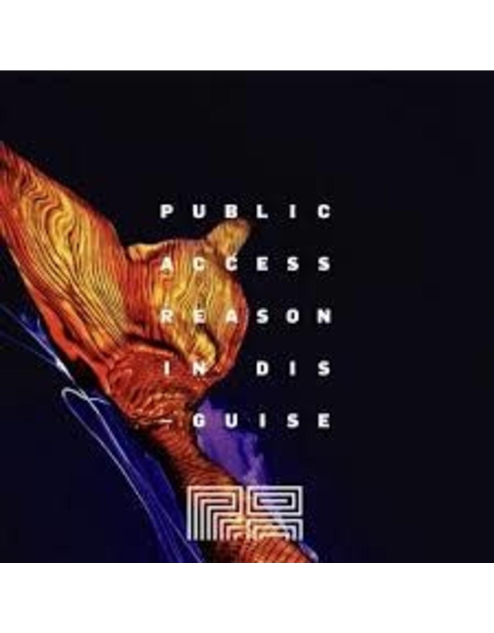 Public Access Public Access: Reason in Disguise 4pk can