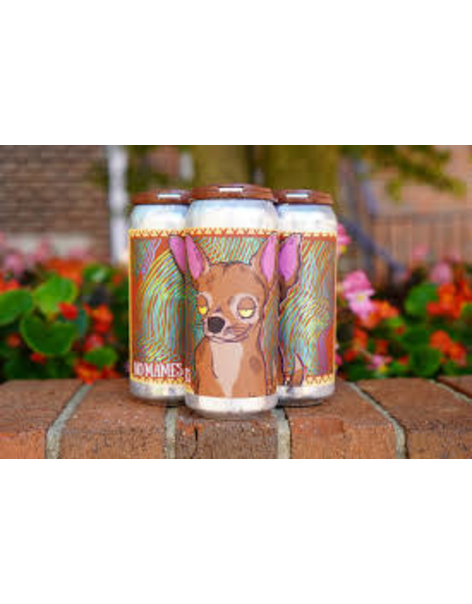 Tripping Animals Tripping Animals No Mames 4pk can