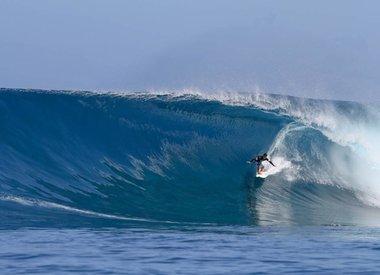 SURF & STRUM