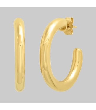 ERINESS 14K YELLOW GOLD PARTY HOOPS