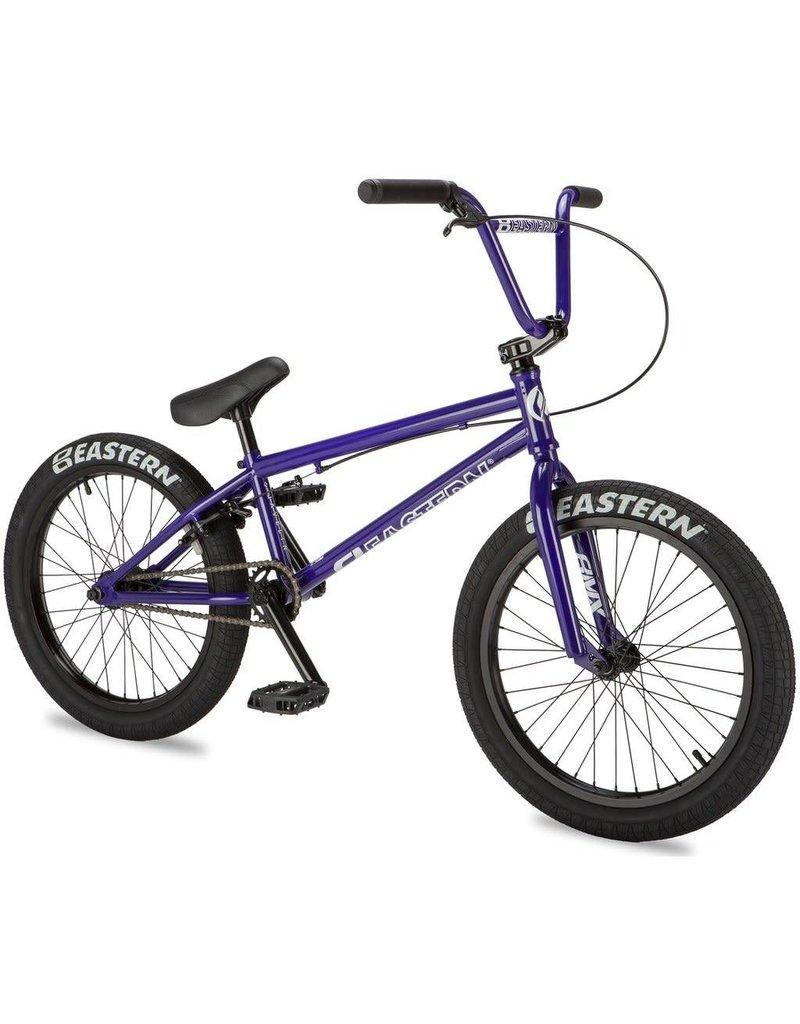 """Eastern Javelin; 20""""; Purple;"""