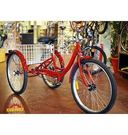 Red Adult Trike