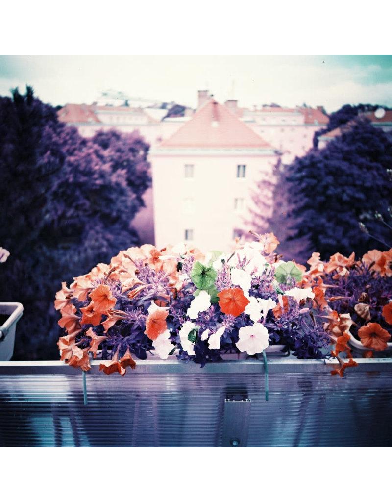 Lomography Lomo Chrome Purple XR 100-400 120 Film