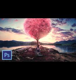 Photoshop 1: Beginning Photoshop for Photographers