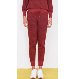 Sundry Stars Tapered Sweatpant