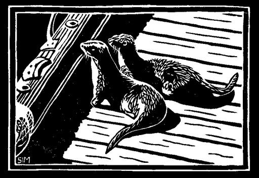 Otters on Savary Dock-1