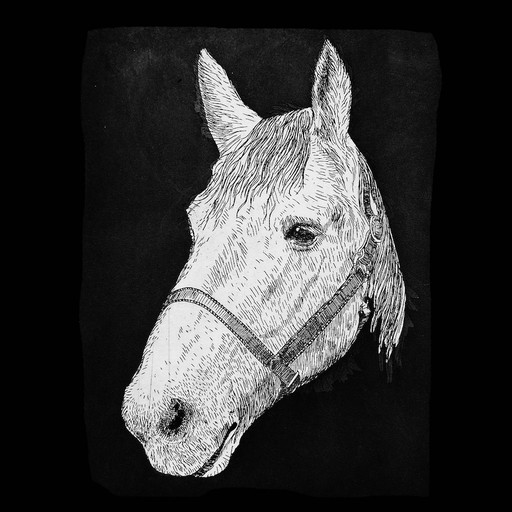 Percheron-Pepper-1