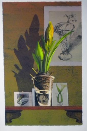 Spring Portait (Oversize)-1
