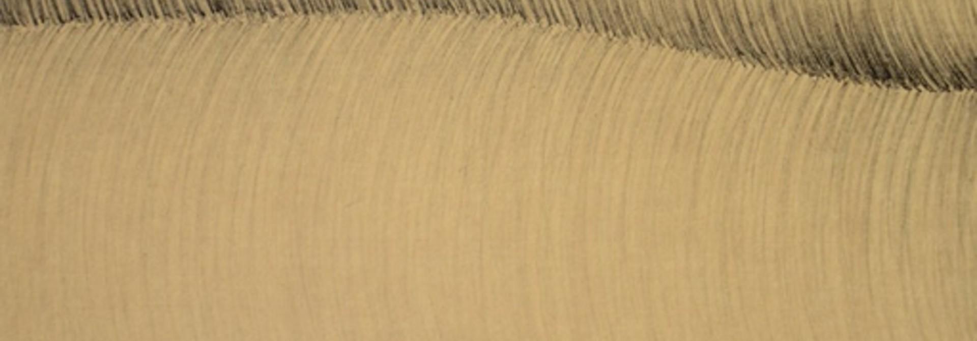 Familiar Curve #4