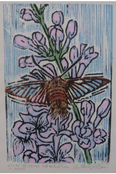Lilac Blossoms and Moth