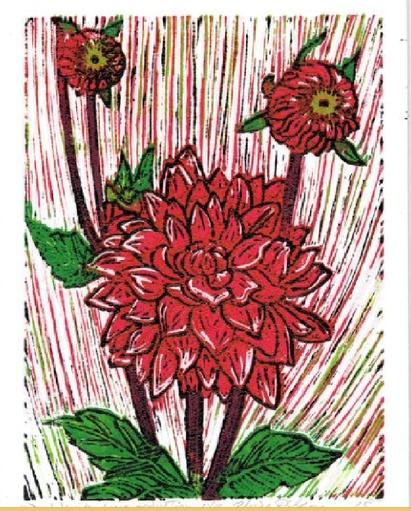 Garden Dahlia-1