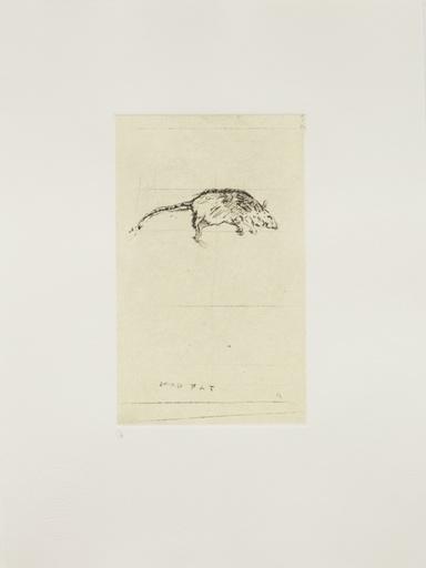 Dead Rat-1