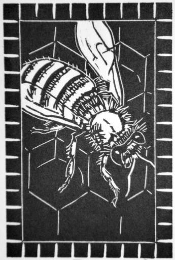 Bee-1