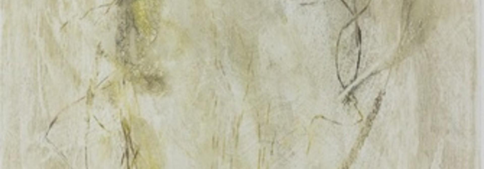 Koleria macrantha