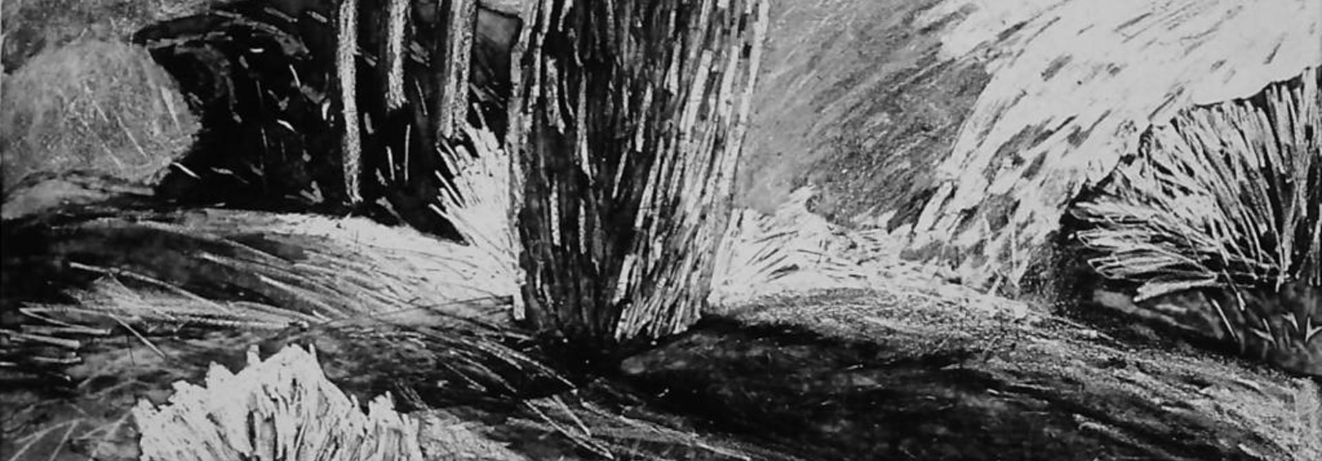 Mountain, Tree, Wave