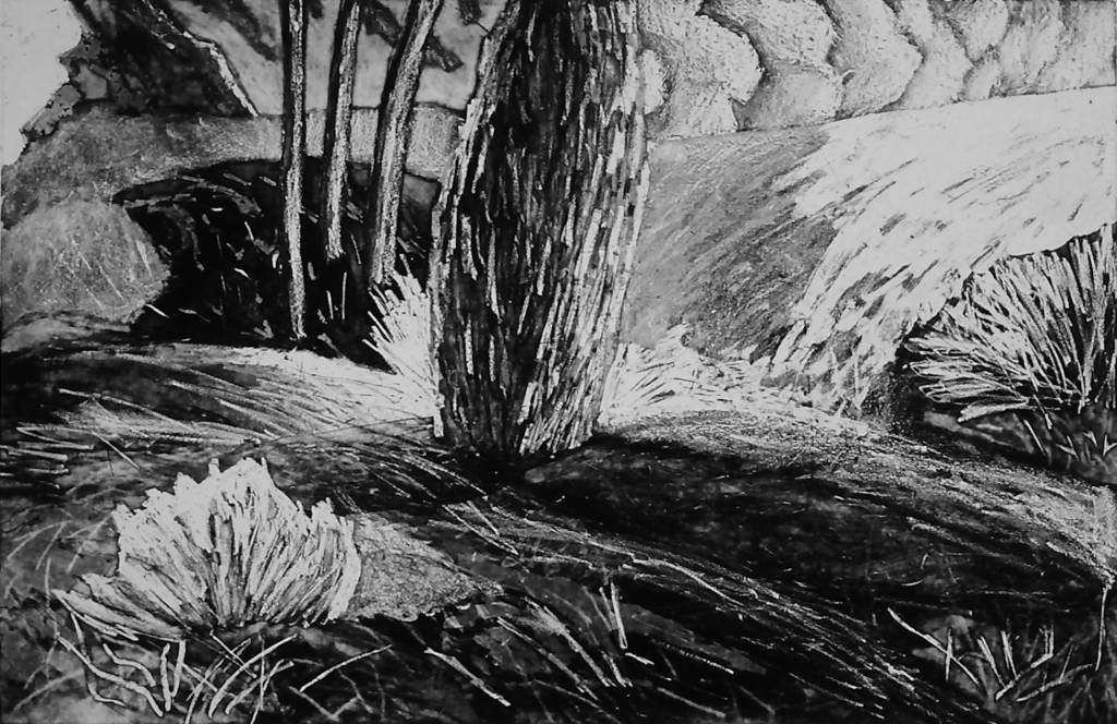 Mountain, Tree, Wave-1