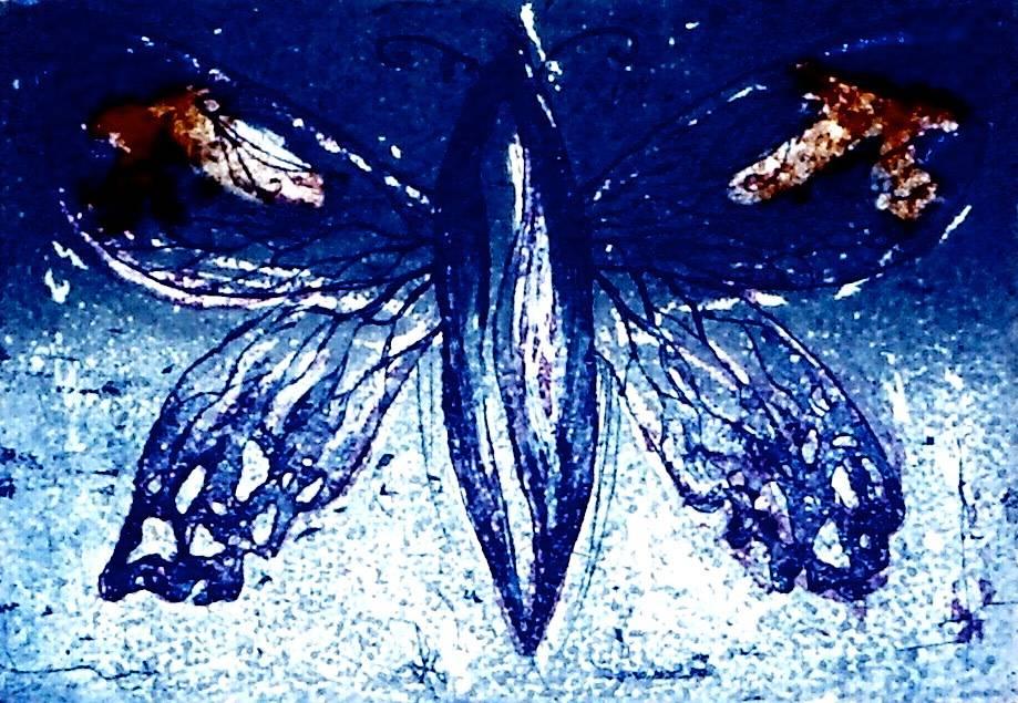 Merlin's Moth II-1
