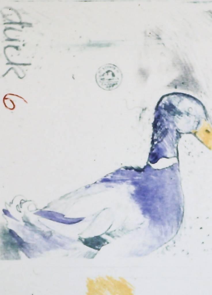Duck 6-1