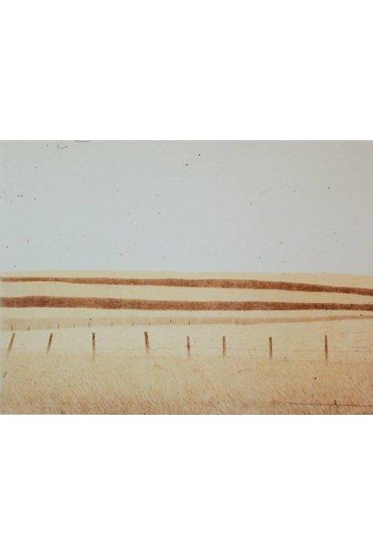 Alberta Fields