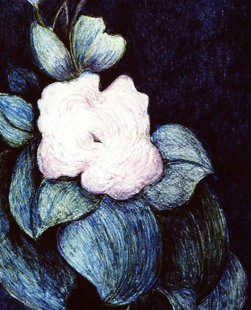 Summer Blooms-1