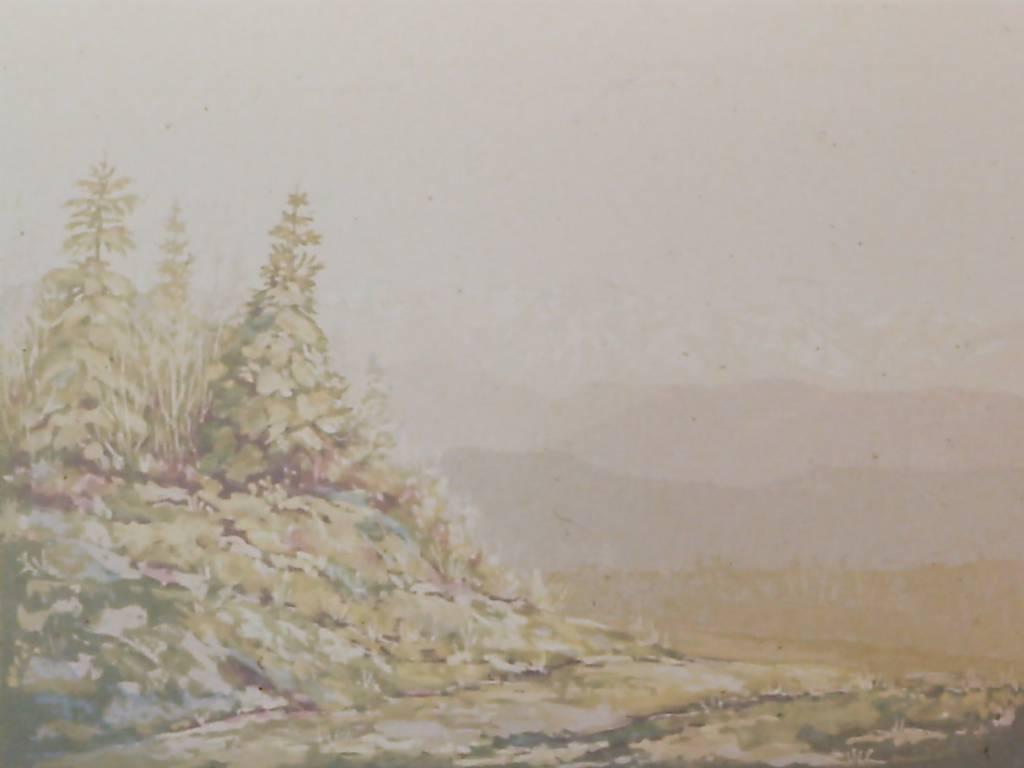 Soft Colours, Athabaska River Valley-1