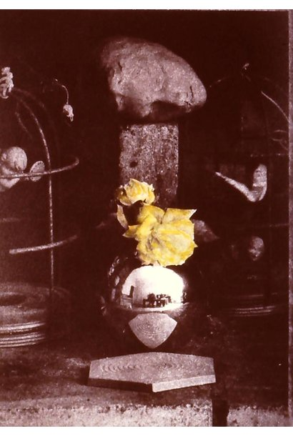 Still Life in Fireplace