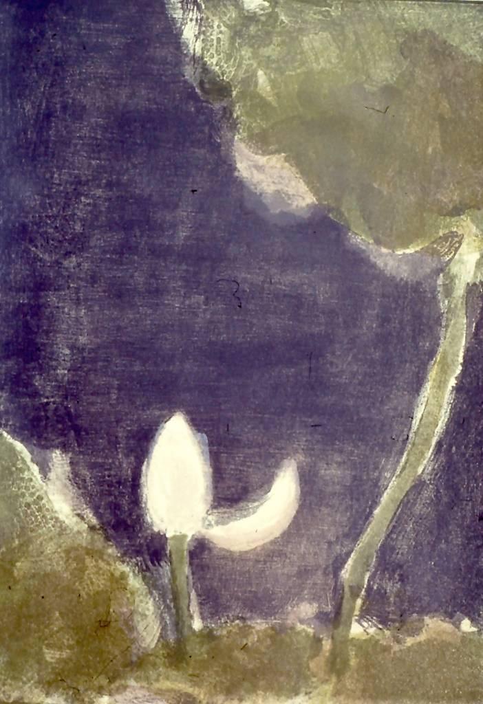 A Lotus Bud At Night-1