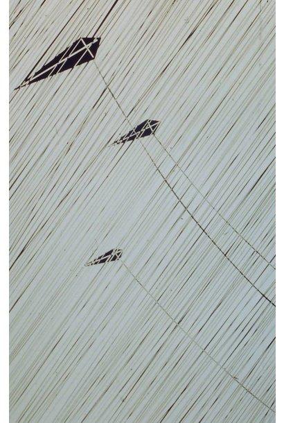 Flying Kites in Rain