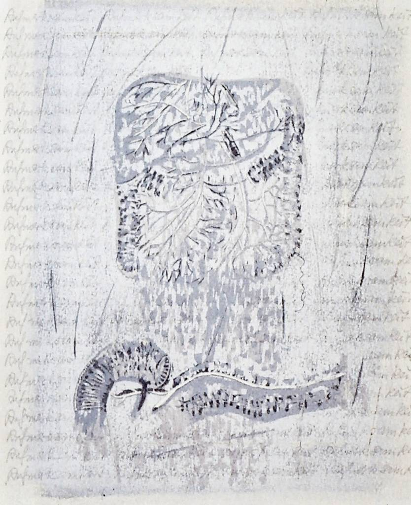 Human Anatomy (Rufiusksamkais)-1