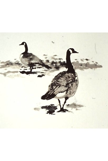 Canada Geese #1