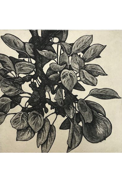 Garden Pear III