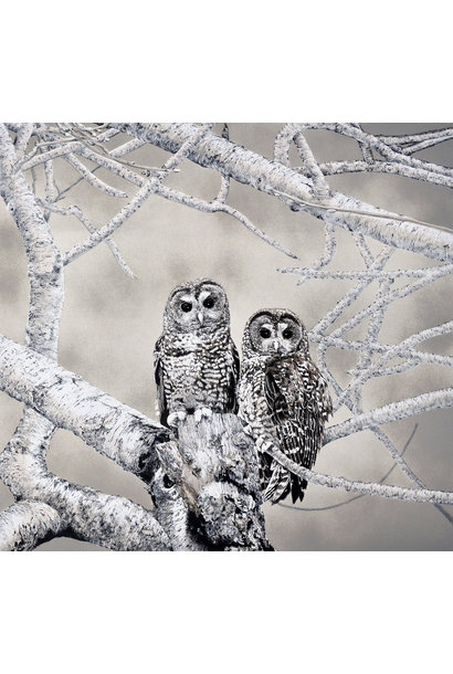 Spotted Owls (framed)
