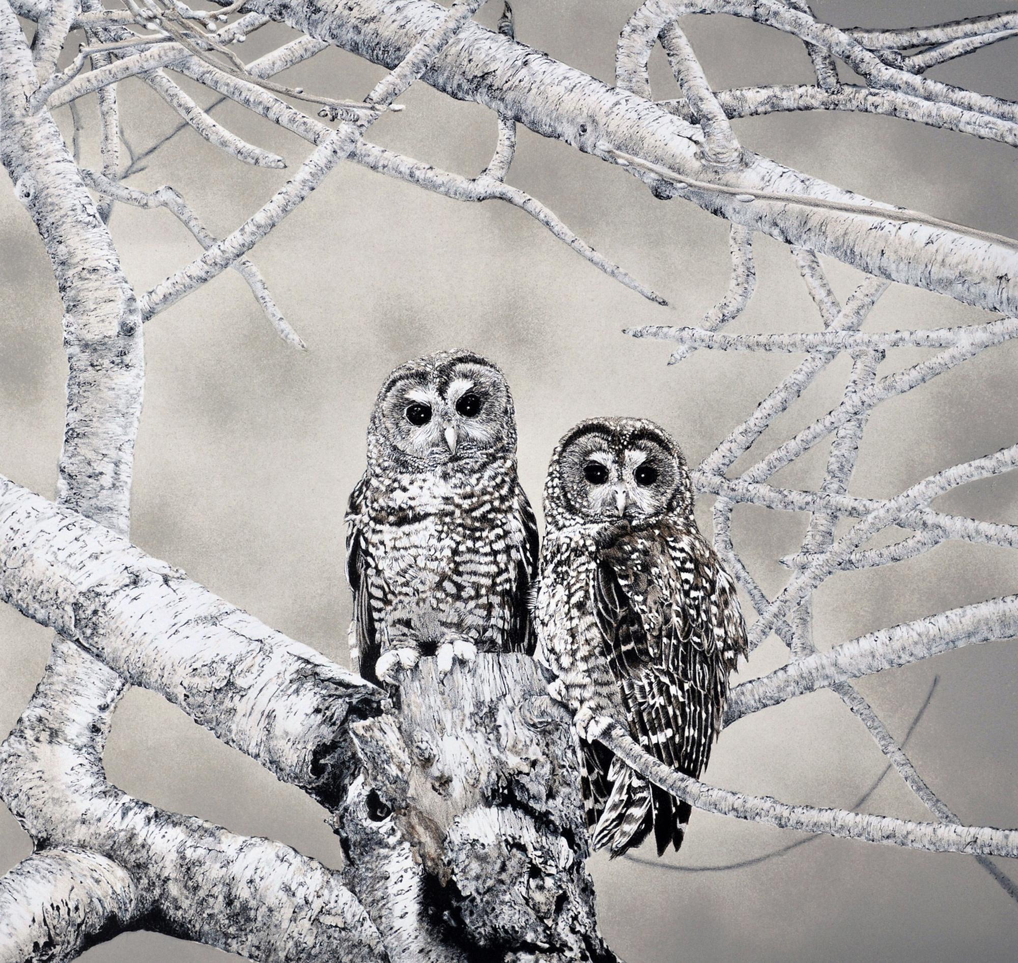 Spotted Owls (framed)-1