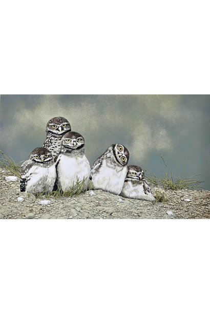 Burrowing Owls (unframed)