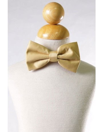 Calla Collection USA INC. Calla Collection Men's Polyester Bow Tie, Color: Gold
