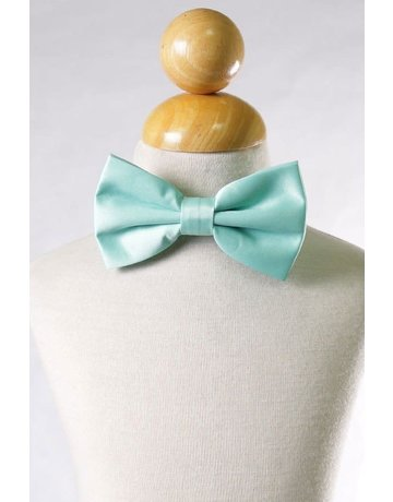 Calla Collection USA INC. Calla Collection Men's Polyester Bow Tie, Color: Mint