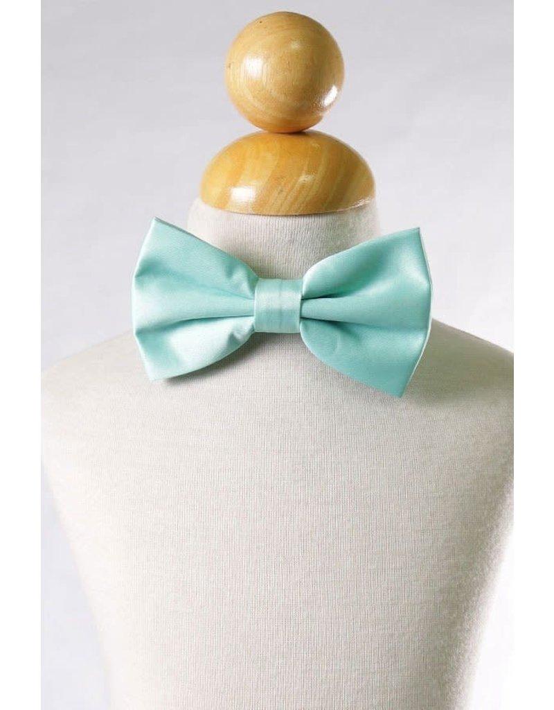 Calla Collection USA INC. Calla Collection Men's Polyester Bow Tie, Color: Mint