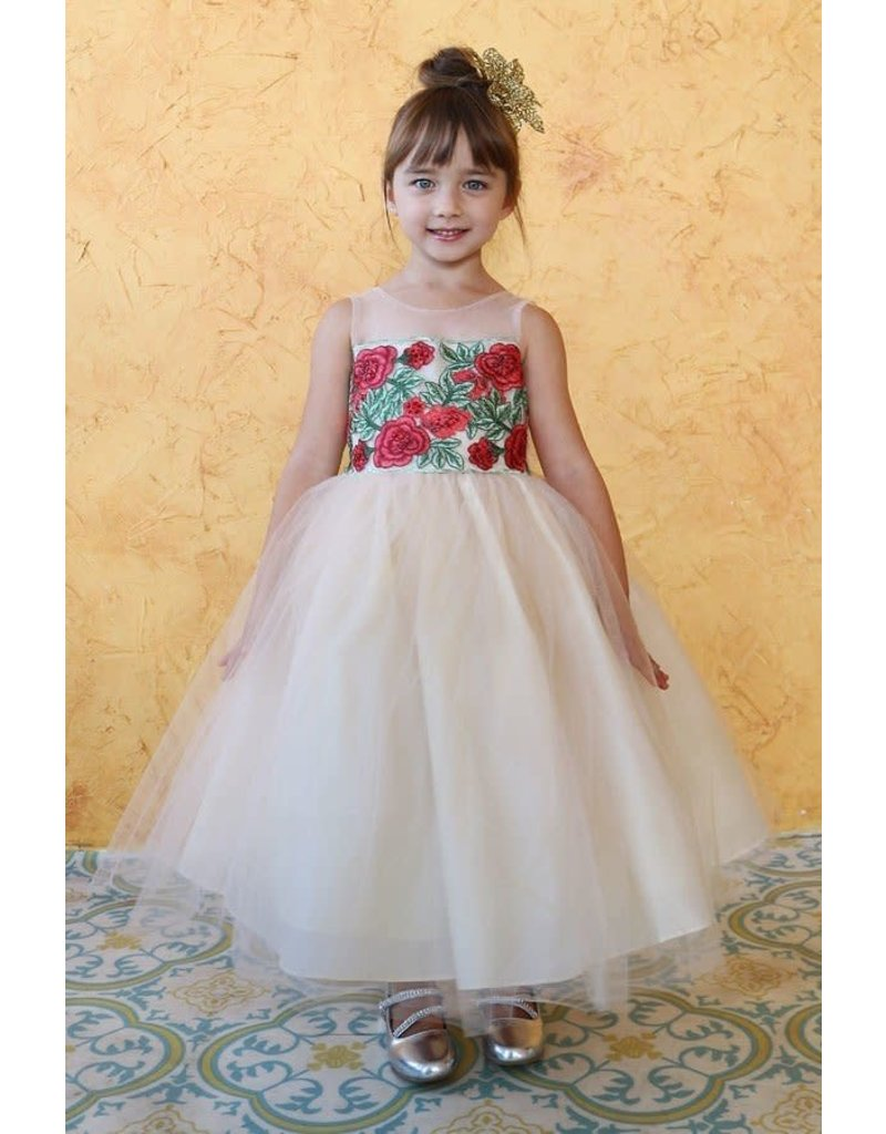 Calla Collection USA INC. Calla Collection D-780 Flower Patch Embroidery Tulle Dress Color: Champange/Red Size: 8