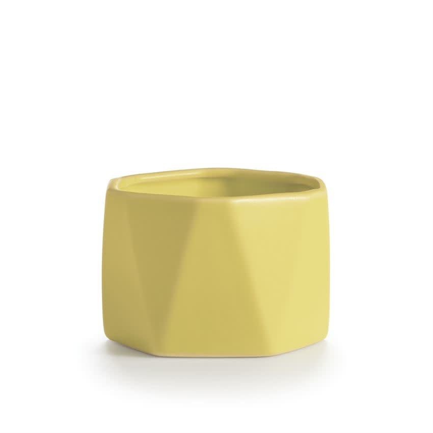 Illume® Illume Pineapple Cilantro Dylan Ceramic
